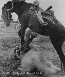 Rodeo a Foggia 2