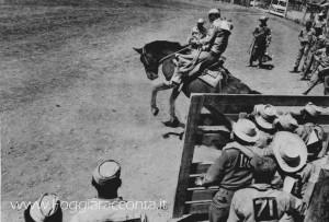 Rodeo a Foggia 6